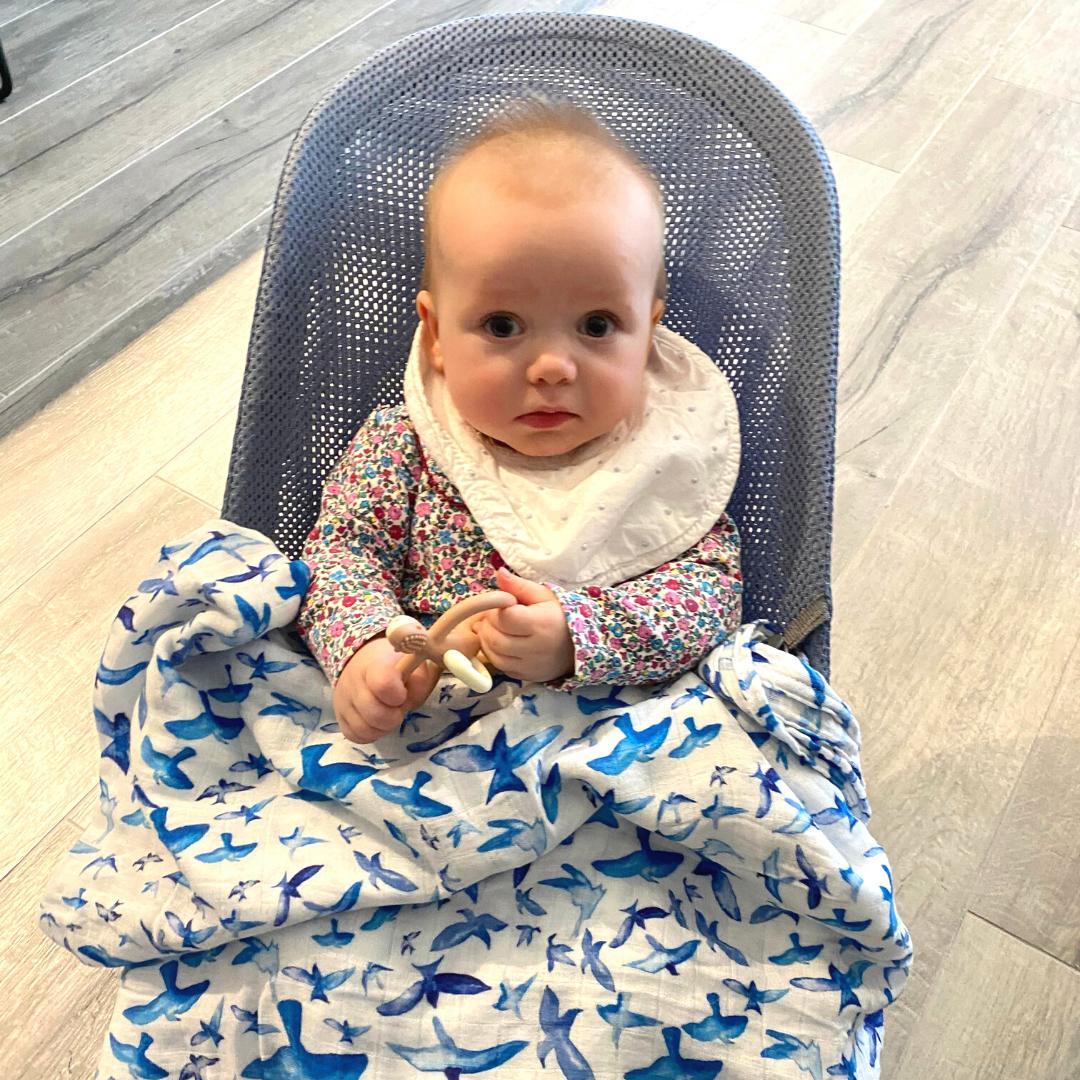 baby girl with blue skies bird print muslin